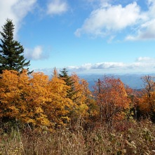 A View From Clingman's Dome, Smoky Mountains