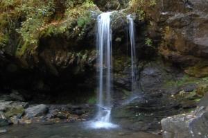 Grotto Falls, Smoky Mountains