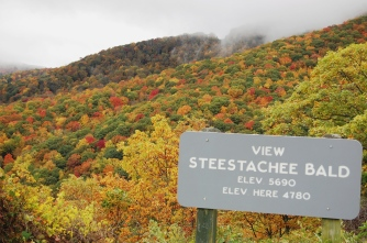 Steestachee Bald, Blue Ridge Parkway, North Carolina