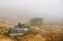 Solitude for Heidi