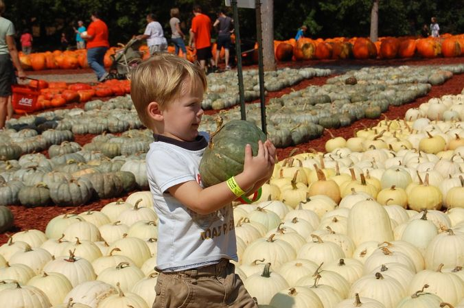 Cole at Burt's Pumpkin Farm, 2012