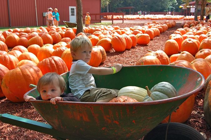 Cole and Kylie at Burt's Pumpkin Farm, 2012