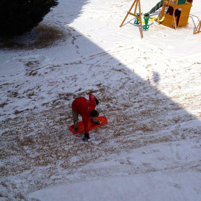 Neighbor sledding