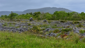 A view of The Burren National Park