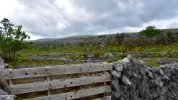Taming the Landscape, The Burren National Park, Ireland