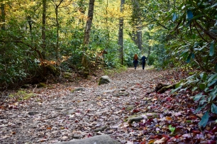 The easy part of Chimney Tops Trail